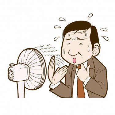 暑い夏ほど冬の準備をするのが漢方