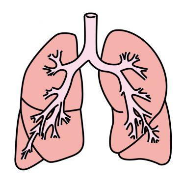 免疫の働きがコロナウイルスの肺炎になる理由らしい