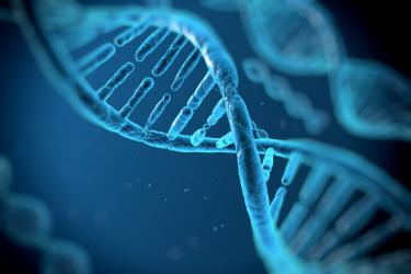 妊娠できないのは精子の遺伝子(DNA)に傷がついているから?