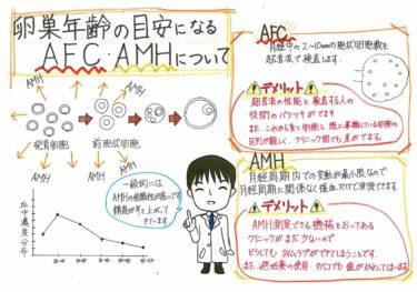 卵巣年齢についての目安 AFC.AMH