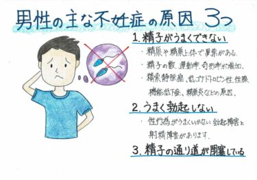 【男性の主な不妊症の原因】
